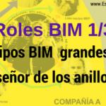 RolesBIM_EquiposGrandes